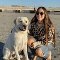 VeeBee Virtual Babysitter: San Diego Sitter
