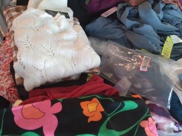 Liquidation/Wholesale Lot: Women clothing  lot new with tags