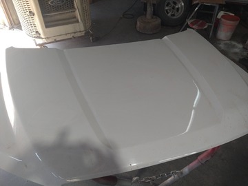 Selling with online payment: Hood for 2019 F-150