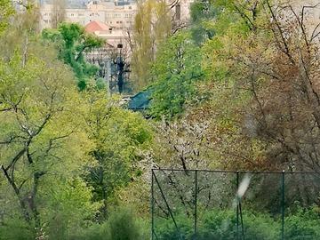 Tauschobjekt: Whg. Mit Blick aufs Schloss Charlottenburg gegen Haus in Kladow