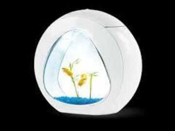 Vente: Aquarium neuf