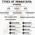 Services (Per Hour Pricing): Pranayama Practice