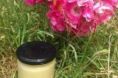 Les miels : Miels de printemps