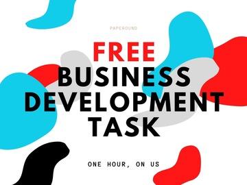 FREE First Task: Zamaan - FREE Bus Dev Task
