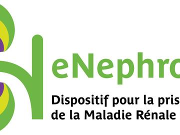 Solutions sur-mesure: eNephro Plateforme pour la Maladie Rénale Chronique
