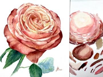 Workshop Angebot (Termine): Aquarellmalerei - Rosen
