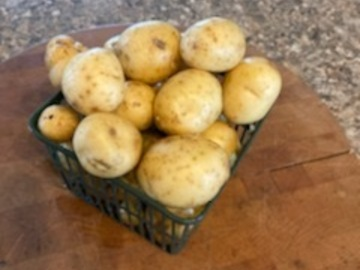 Selling Without Online Payment: Potatoes - Beyond Organic