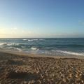 Excursion or Lesson: Playa Grande Surf School