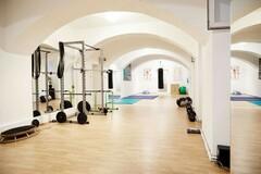 Vermiete Gym pro H: 80 m2 Trainingsraum + Garten in 1020 Wien