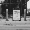 Workshops & Events (Per event pricing): Trivia - Virtual or In-Person