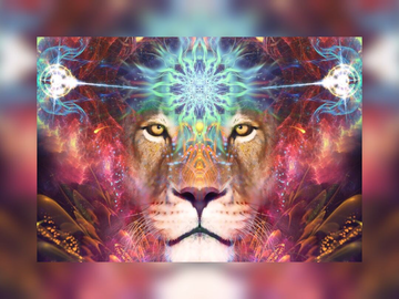 Selling: The Lion's Gate Portal Email Reading (8 Cards)