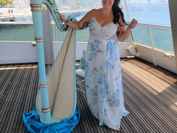 Renting out with online payment: Lever harp  ( concert harp size )