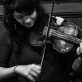 Offering with online payment: Violin and Fiddle teacher