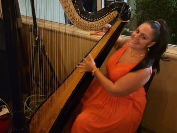 Renting out with online payment: Concert Harp