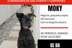 Anuncio: Desaparecida Moky