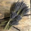 For sale: Lavender Bundle