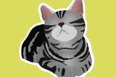 : Grey Tabby American British Shorthair Waterproof Vinyl Sticker