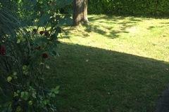 NOS JARDINS A PARTAGER: Prête jardin contre entretien