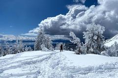 per person: Snowshoe in Lake Tahoe