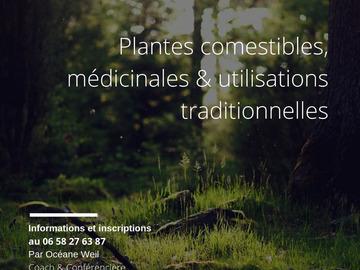 Actualité: Balade découverte des plantes sauvages comestibles et médicinales