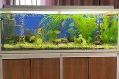 Selling: *Aquarium 240L - bought almost 6 months ago