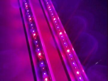 Post Now:  ECO Farm ECOM 30W UV & IR Supplemental Grow Light Bar