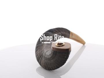 Post Now: Ram Black Horn Pipe