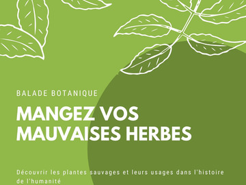 Offre: Balade botanique ce dimanche + autres dates à Maisons Laffitte