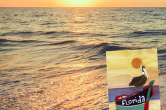 Selling with online payment: 2 St. Pete 4x6 Postcards