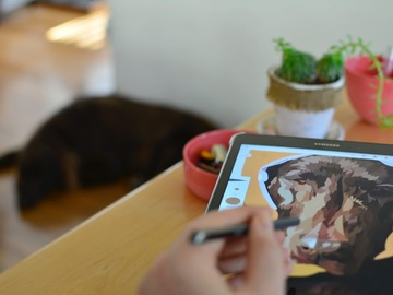 Looking for volunteers: Skilled Digital Artists needed to illustrate cats and dogs