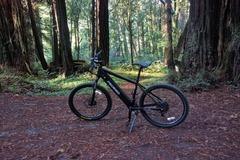 For Sale: Pedego Ridge Rider