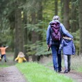 Freebies: How Can Physical Activity Become a Way of Life?