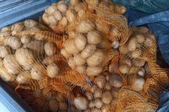 Vente avec paiement en ligne: Pomme de terre Mona Lisa filet de 5 kg agriculture biologique