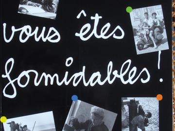 Vente: Vous êtes formidables ! L'album de famille des Français