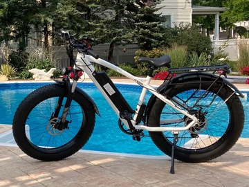 For Sale: Fat Tire Ebike Illinois