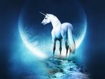 Selling: New Moon Unicorn Reading
