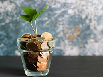 Coaching Session: Your Guide to Financial Wellness.