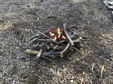 Daily Rental: Faux Campfire