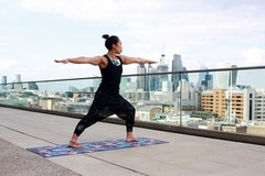 Services (Per Hour Pricing): Vinyasa & Yin Yoga