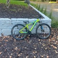 Renting out with online payment: Spealized mountain bike