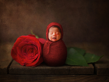 Fixed Price Packages: Newborn Photography Services