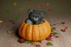 For Sale: Autumn Teddy