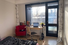Renting out: Room in a friend apartment (For the month of January 2022)