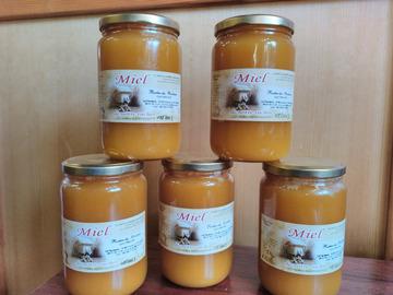 Les miels : Miel - récolte été 2021