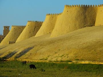 Demande de devis: Le grand tour - Ouzbékistan