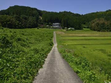 お知らせ: 令和3年度 奈良市地域プロジェクトマネージャーを1名募集!~ならの東(はる)から始める持続可能なまちづくり~