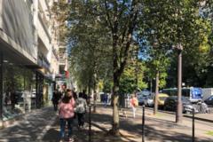 Offre: Studio à louer près de Place d'Italie à Paris