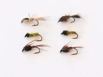 Selling with online payment: Nymph Fly Gift Pack