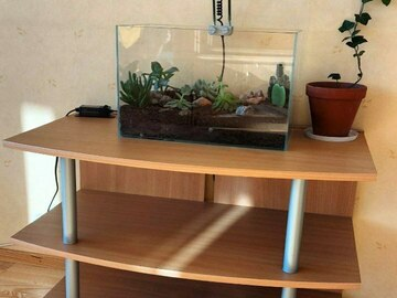 Selling: Small wooden TV stand