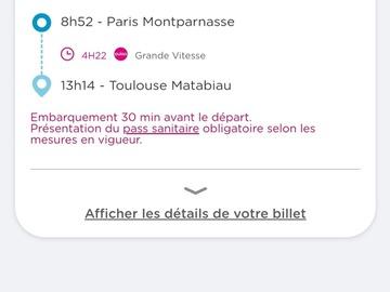 Vente: Billet TGV - Aller Paris-Toulouse (68€)